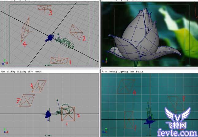 MAYA7.0制作荷花材质教程 飞特网 MAYA材质灯光