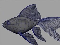 Maya 制作鱼的模型
