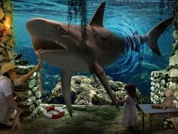 PS合成穿越的鲨鱼梦幻场景教程