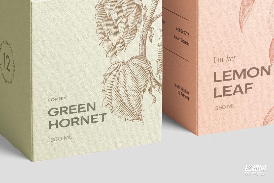 果茶包装盒设计 飞特网 茶叶包装设计