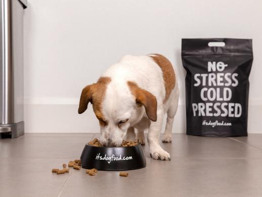 狗粮包装袋设计
