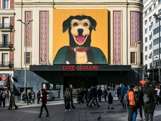 流浪动物收容机构宣传海报设计