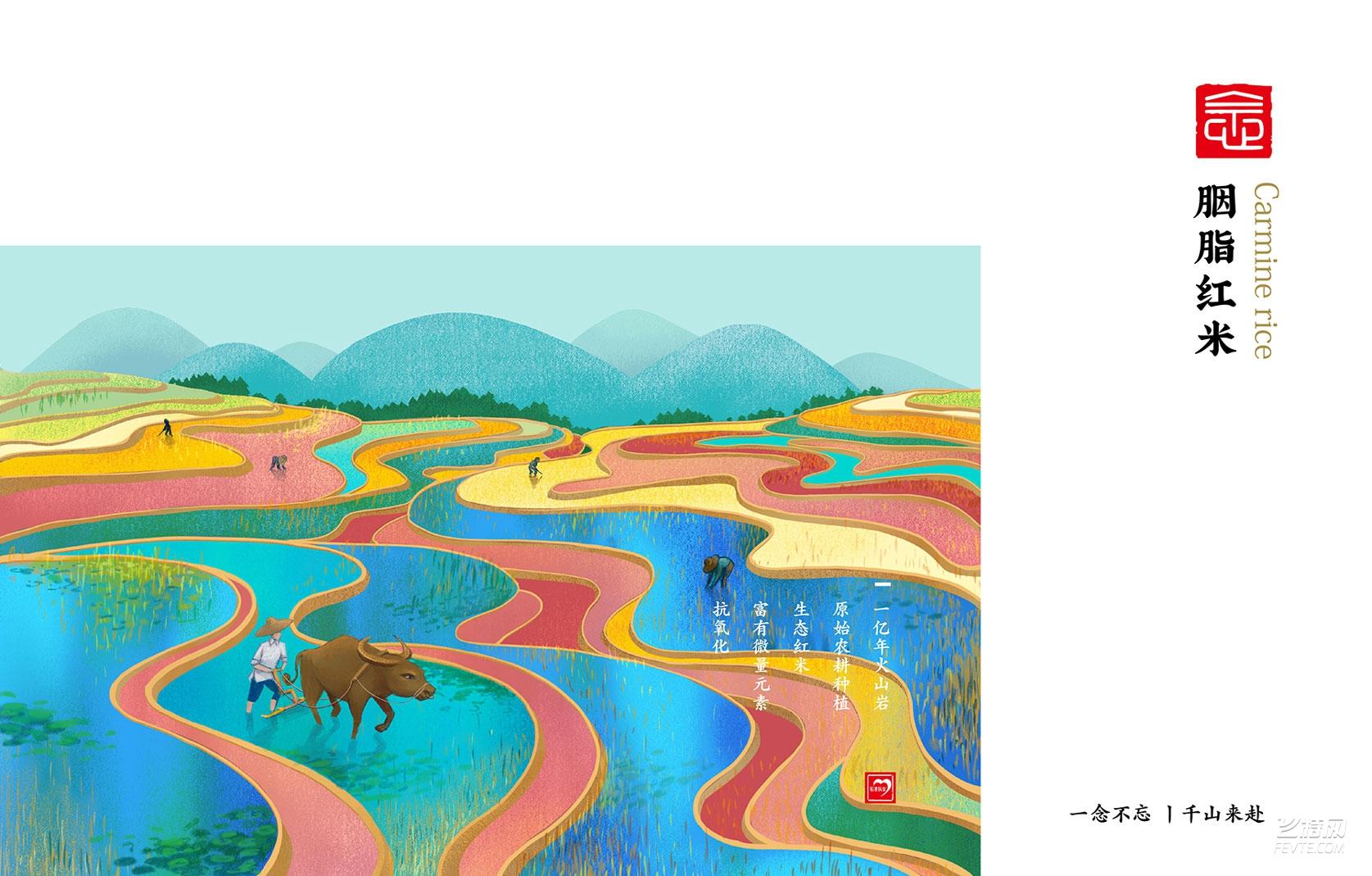 德信念山农场-生态米(图3)