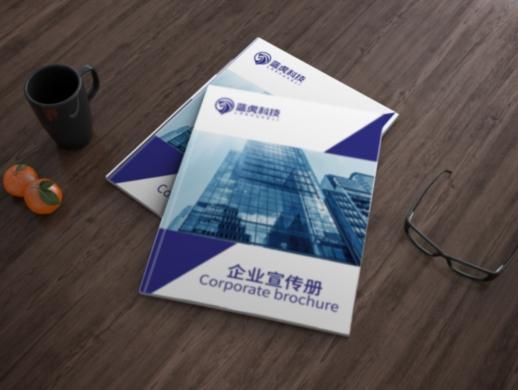 蓝虎科技公司画册设计